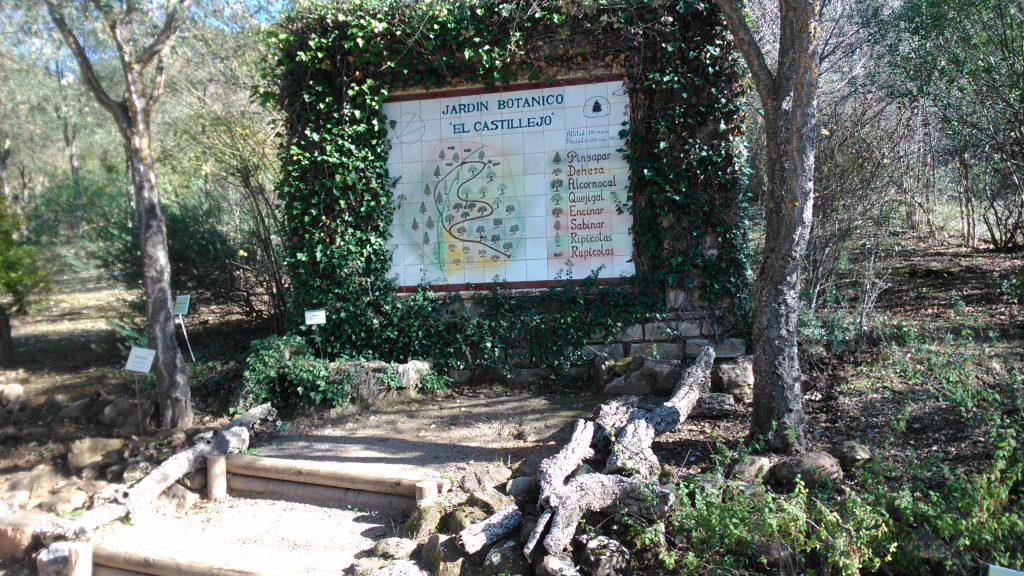 Pueblo El Bosque