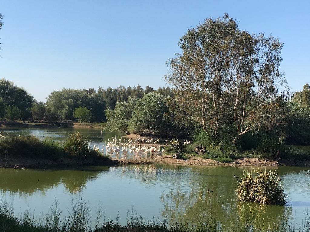 Reserva natural la cañada de los pájaros