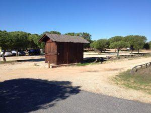 Excursión por el litoral de Doñana