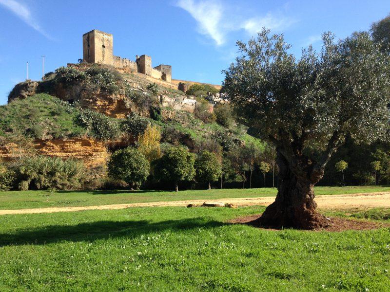 Senderismo por Alcalá de Guadaira