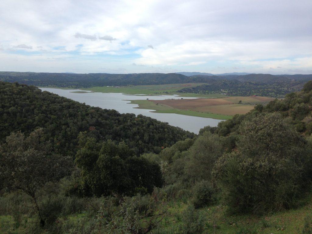 Vista de la Presa Torán