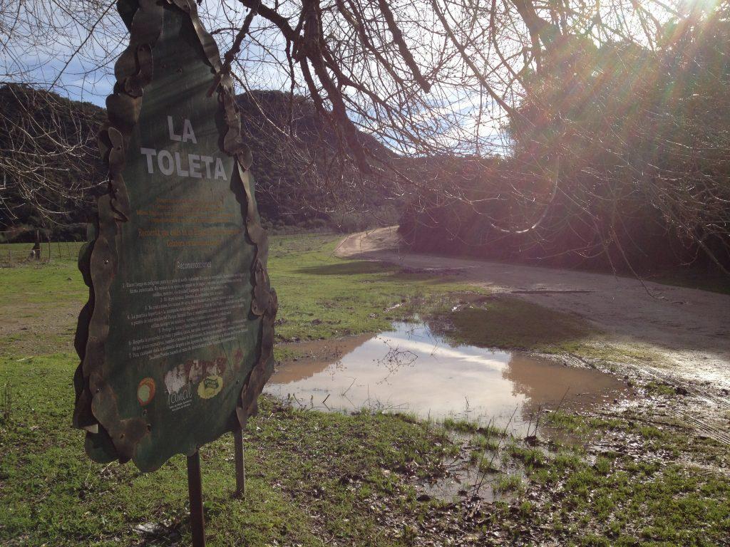Excursión a La Toleta