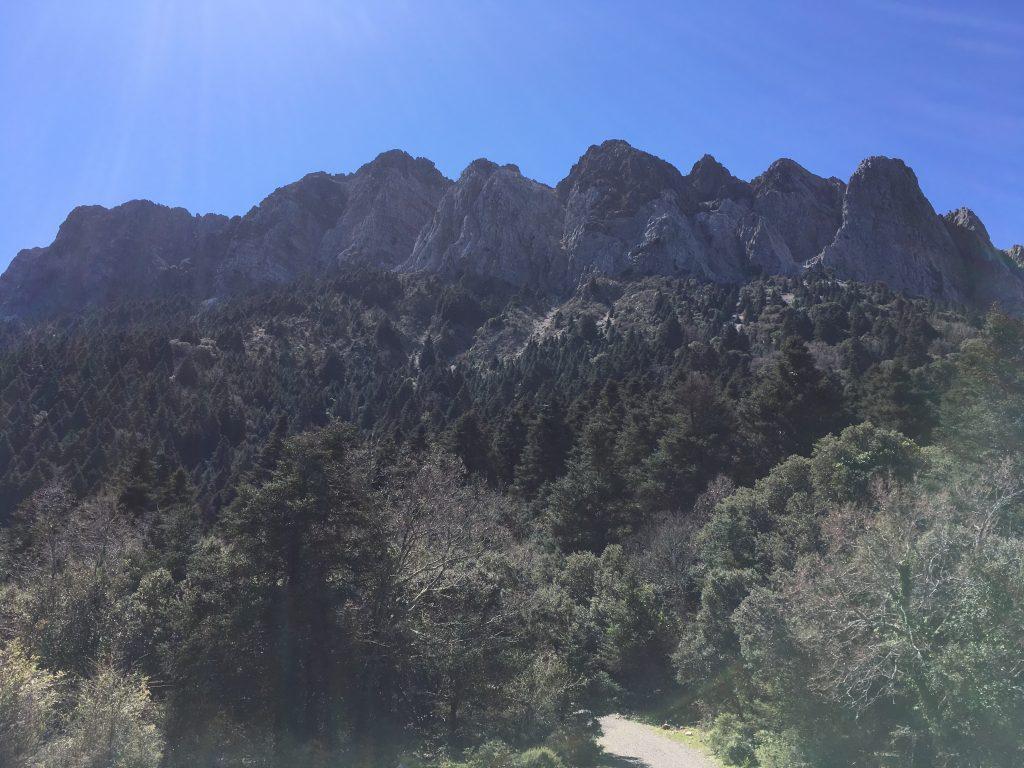 Sendero del Pinsapar