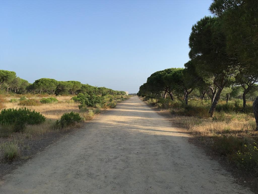 Parque Dunar