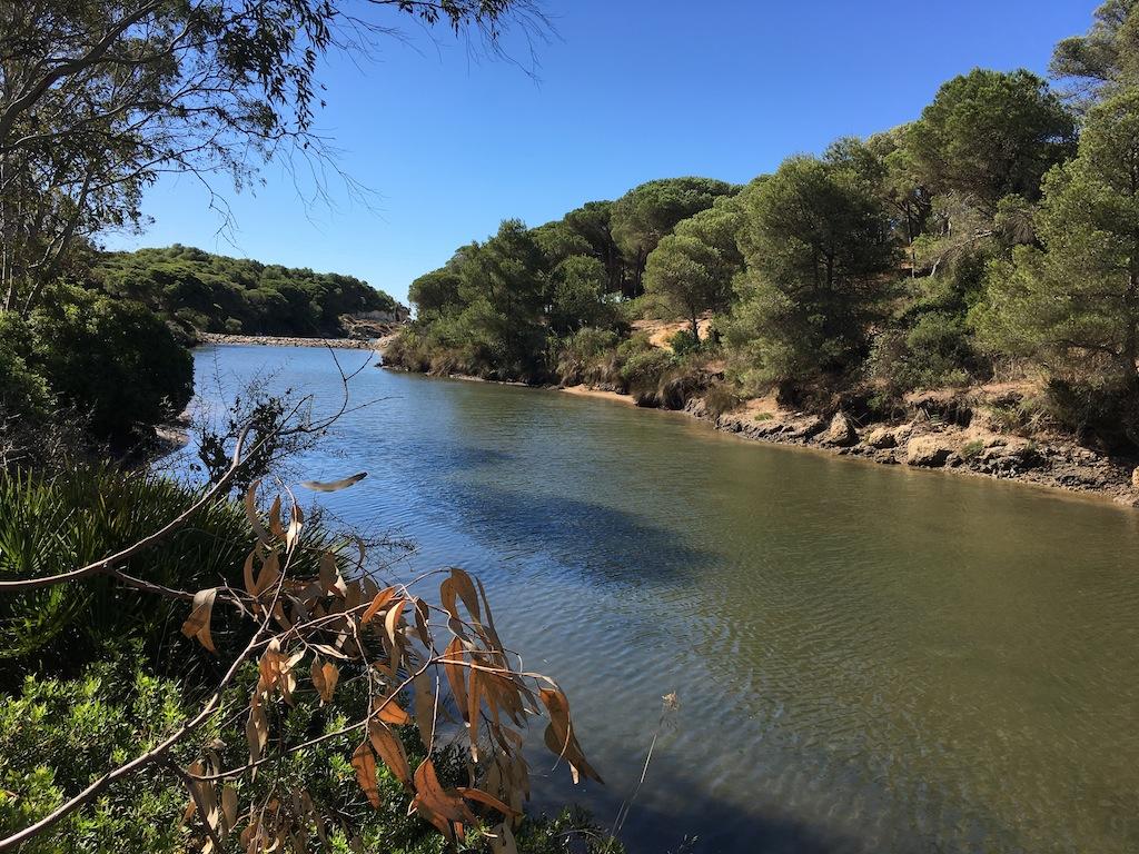 Río Roche