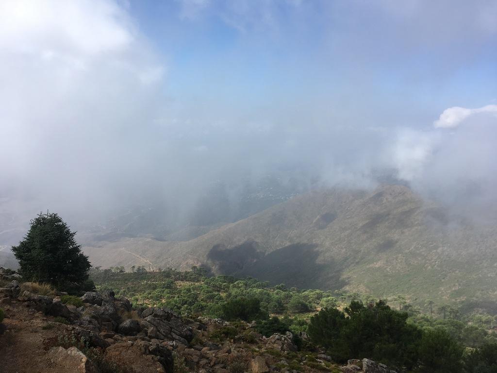 Vista con niebla
