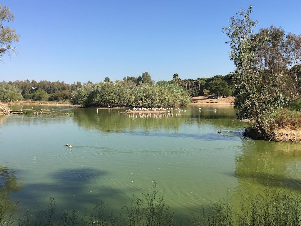 Foto la Cañada de los Pájaros