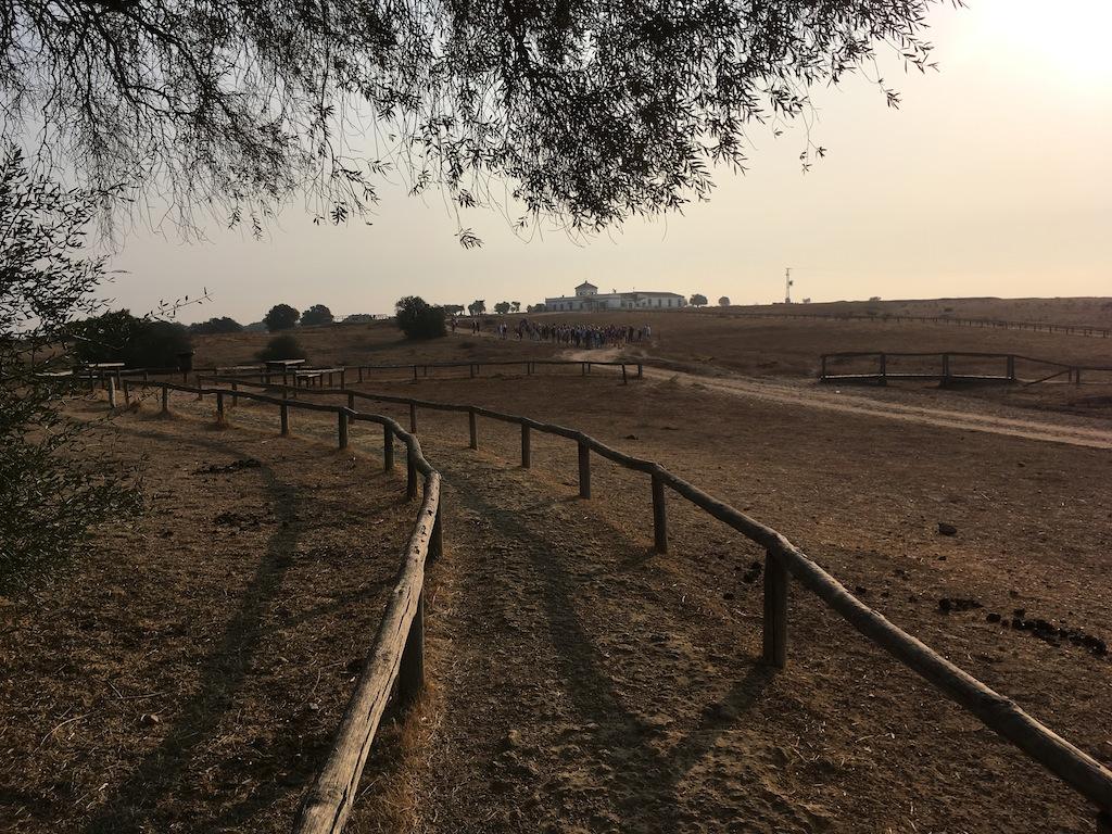 Los Pinares de la Dehesa de Abajo
