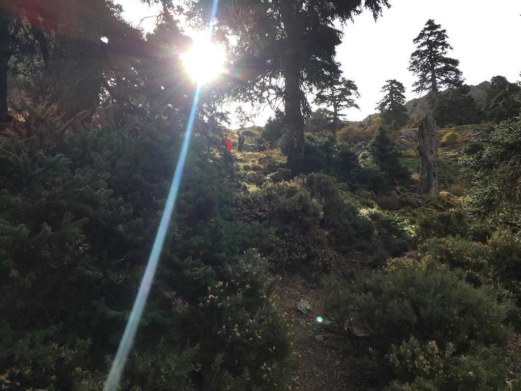 Subida al Pico Torrecilla