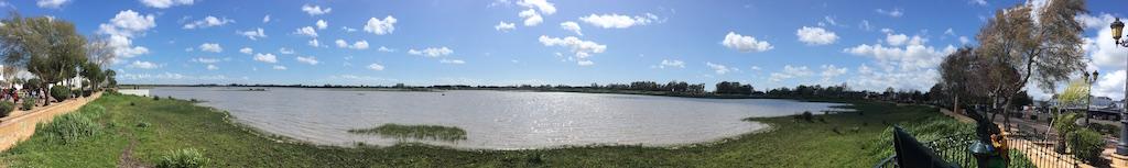 las Marismas de Doñana en El Rocío1