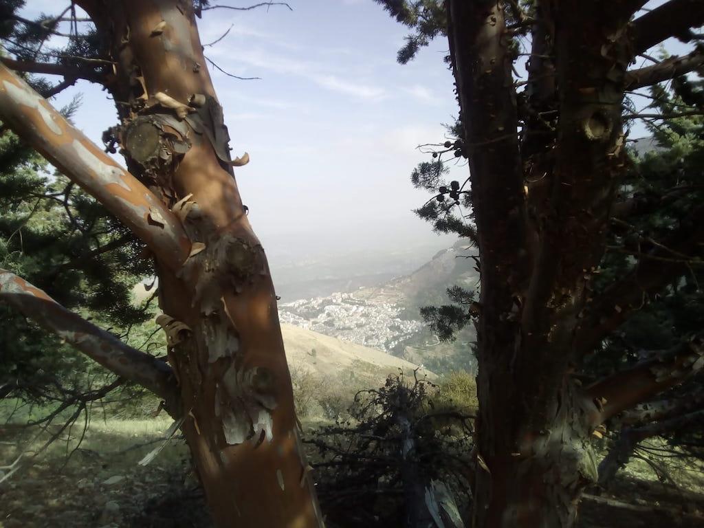 Viaje senderista a Cazorla