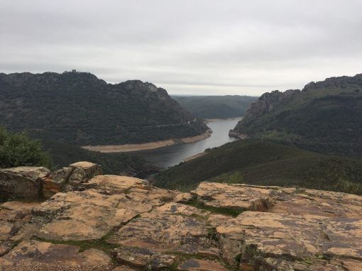 Viaje al Jerte y Monfragüe