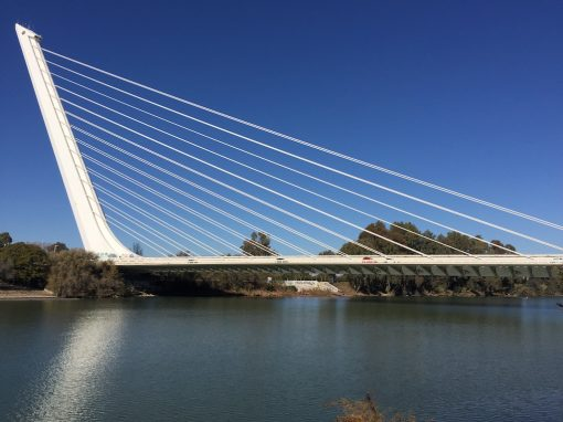 la dársena y sus puentes