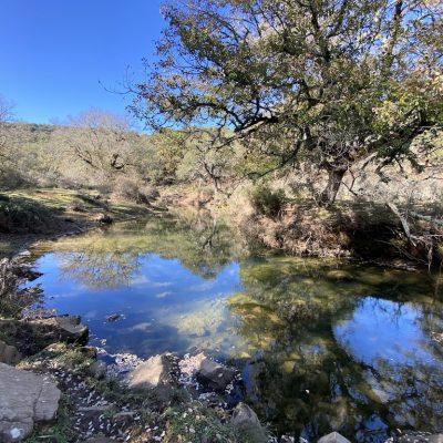 Lagunas del Campobuche