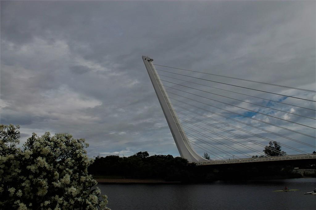 puente Alamillo