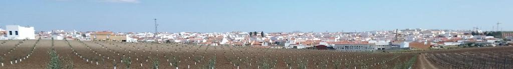 Etapa 8. Zafra a Villafranca de los Barros