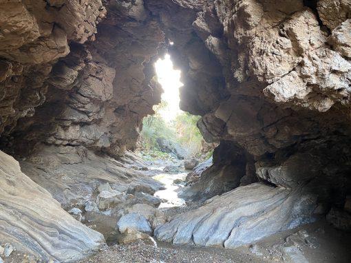 El ruta del Tempranillo